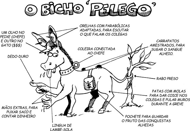 CHARGE-BICHO-PELEGO